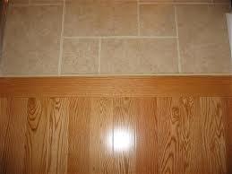 Ceramic Tile To Laminate Transition Strip